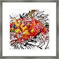 Bleeding Petals  Framed Print