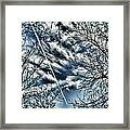 Blue Skies And Contrails Framed Print
