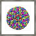Bluetongue Virus Particle Framed Print