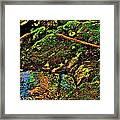 Brook Texture 49 Framed Print