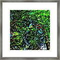 Brook Texture 6 Framed Print