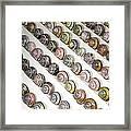 Brown-lipped Snail Colour Variants Framed Print