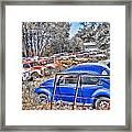 Bug Yard Framed Print