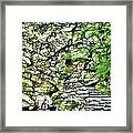 Buttermilk Falls 102 Framed Print