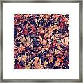 Camouflage 02 Framed Print by Aimelle