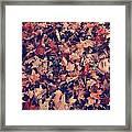Camouflage 02 Framed Print