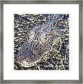 Camouflaged Gator Framed Print