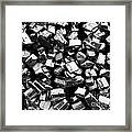 Can You Guess What This Is    Bw Framed Print