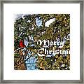 Cardinal Christmas Card Framed Print
