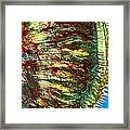 Cat Tongue Tissue, Light Micrograph Framed Print by Dr Keith Wheeler