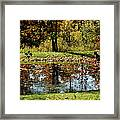 Catching Frogs Framed Print