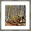 Catoctin Trail Framed Print