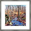 Catoctin Woods Framed Print