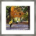Central Park Fall Walk Framed Print