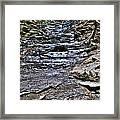 Chasing The Eternal Flame At Chestnut Ridge Park Framed Print