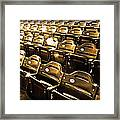 Cheap Seats Framed Print