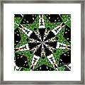 Children Animals Kaleidoscope Framed Print