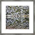 Chimney Pond Reflections Framed Print