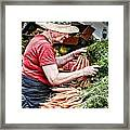 Choosing Carrots Framed Print by Norma Warden