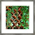 Clay Pattern Wall With Vines Framed Print