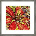 Clematis In Colored Pencil  Framed Print