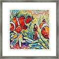 Clownfish In Their Paradise Framed Print