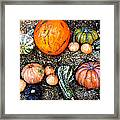 Colorful Fall Harvest Framed Print