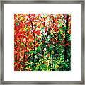 Colors Of October Framed Print