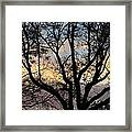 Colours Of The Dusk Framed Print