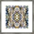 Complexity Of Creation Framed Print