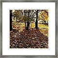 Country Color 11 Framed Print