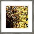 Country Color 22 Framed Print