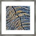 Crack In Pahoehoe Lava Framed Print