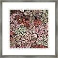 Creative Hues Of Mother Nature Framed Print