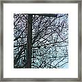 Crows And A Cross Framed Print