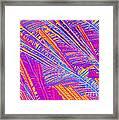 Didanosine Crystal Framed Print