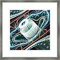Dont Exhale Th Edit Framed Print