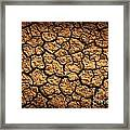 Dried Terrain Framed Print
