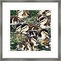 Duck-pile Framed Print