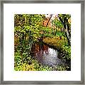 Early Autumn In Maine Framed Print