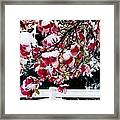 Early Magnolia Late Snow Framed Print