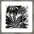 Echinacea Block Print Framed Print