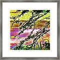 Edge Of The Pond Framed Print