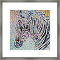 Electric Zebra Framed Print