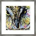 Eyes Of Owl's 13 Framed Print