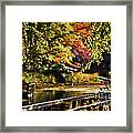 Fall At Tyler State Park Framed Print