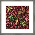 Fall Autumn Leaves Framed Print by John Farnan