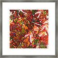 Fall Leaves - Digital Art Framed Print