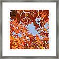 Fall Leaves Art Prints Autumn Red Orange Leaves Blue Sky Framed Print