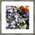 Fall Medley Framed Print